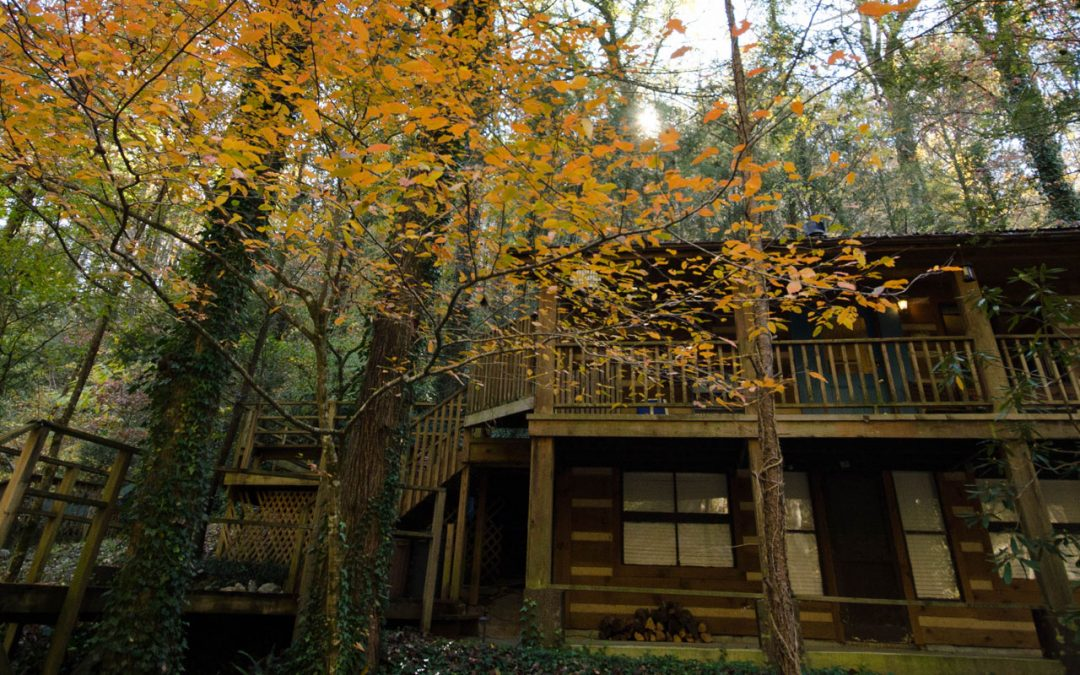 Fall Specials at Owl's Hoot Chalet and Hideaway on the Creek